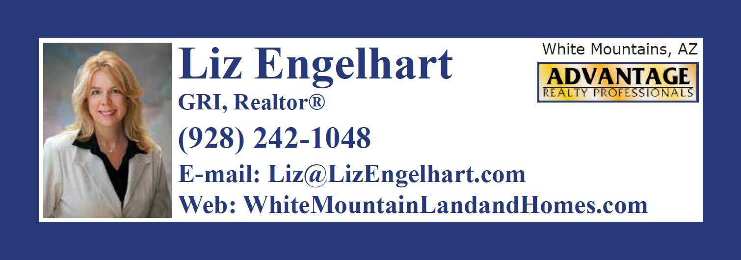 advantage realty2-white mtn az