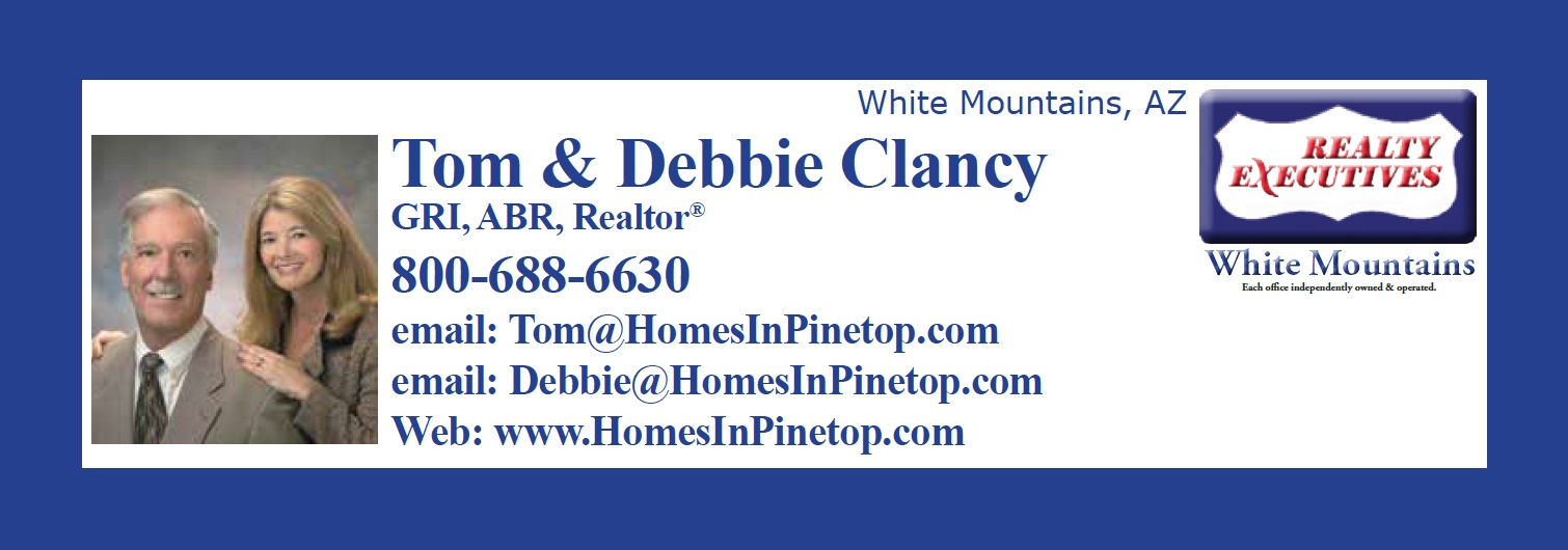 realty executives 2-white mtn az